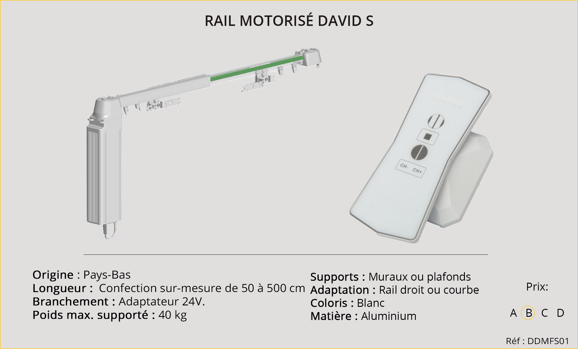 Rail DAVID S