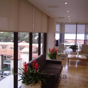 Rideaux Hotels Enrouleurs Bureaux Réunion